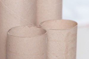 The cardboard cores from paper towel rolls.