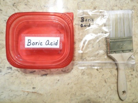 "A container of boric acid and a paintbrush stored inside a plastic baggie marked ""boric acid""."