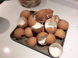 Eggshells for Your Garden - brown egg shells