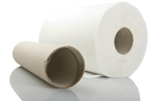 An empty cardboard paper towel roll next to a full roll of paper towels.