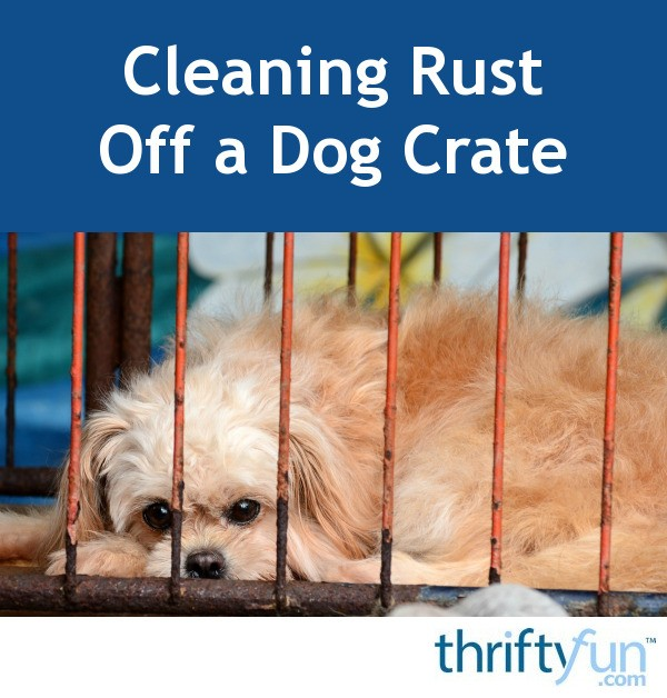 Cleaning Rust Off a Dog Crate   ThriftyFun