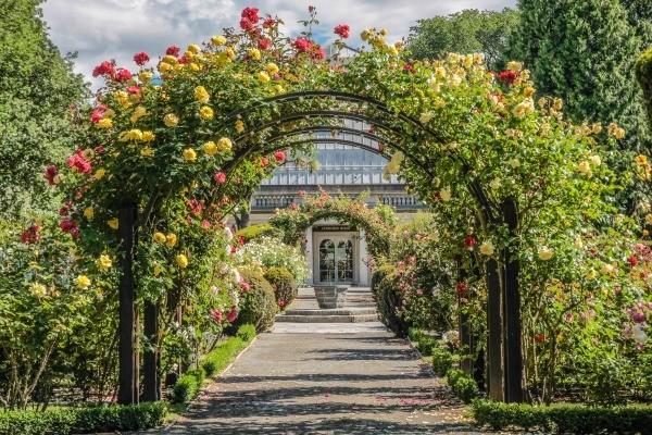 A Rose Arbor Over A Path To A Botanical Garden.