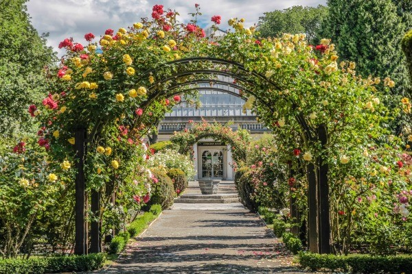 Visiting Botanical Gardens | ThriftyFun