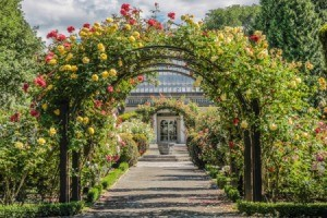 A rose arbor over a path to a botanical garden.