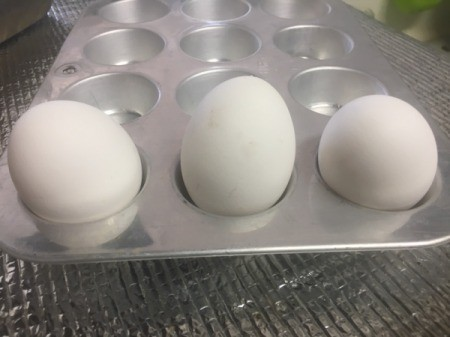 Eggs in a muffin tray for baking.