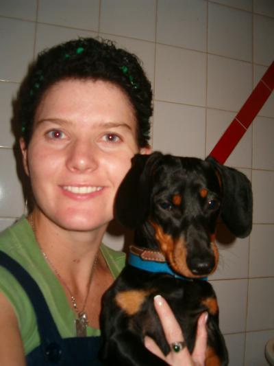 Breed Information: Dachshund