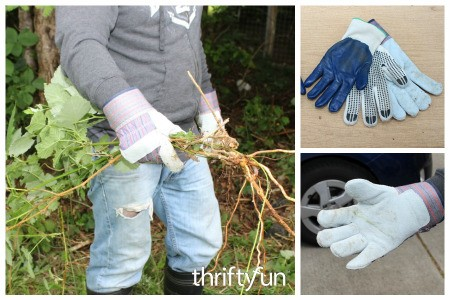 Homemade Blackberry Pulling Gloves