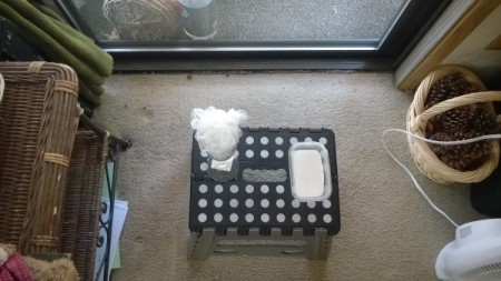 Paint Window to Hide Parking Lot - scrubby in glass and tray of white paint