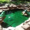 A garden rock pond with decorative frogs all around.