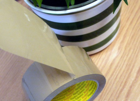 A roll of tape next to a plant.