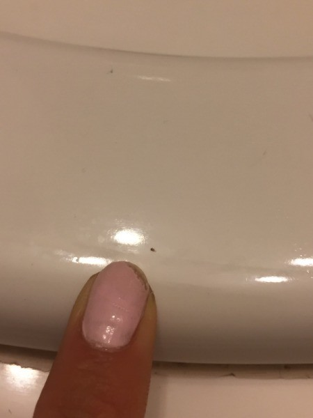 Tiny Biting Black Bugs - finger pointing to tiny bug