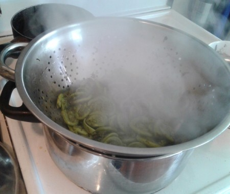 Steamed Fiddleheads on stove
