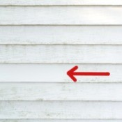 Cleaning Mold From Vinyl Siding - arrow pointing to cleaned area
