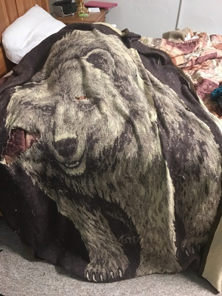 Repairing a Worn Blanket - bear image throw blanket