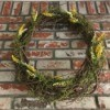 Making a Living Air Plant Wreath - wreath against a brick background
