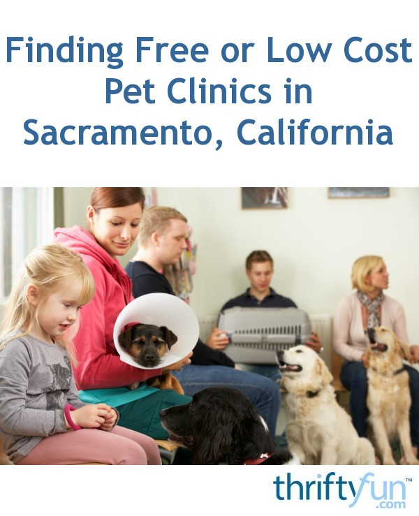Finding Free Or Low Cost Pet Clinics In Sacramento. Thinking Signs. Chalkboard Signs Of Stroke. Reference Signs Of Stroke. Calm Down Signs. Manic Episode Signs Of Stroke. Master Bedroom Signs Of Stroke. Directory Signs. Abstract Signs