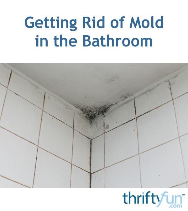 Getting Rid Of Mold In The Bathroom Thriftyfun