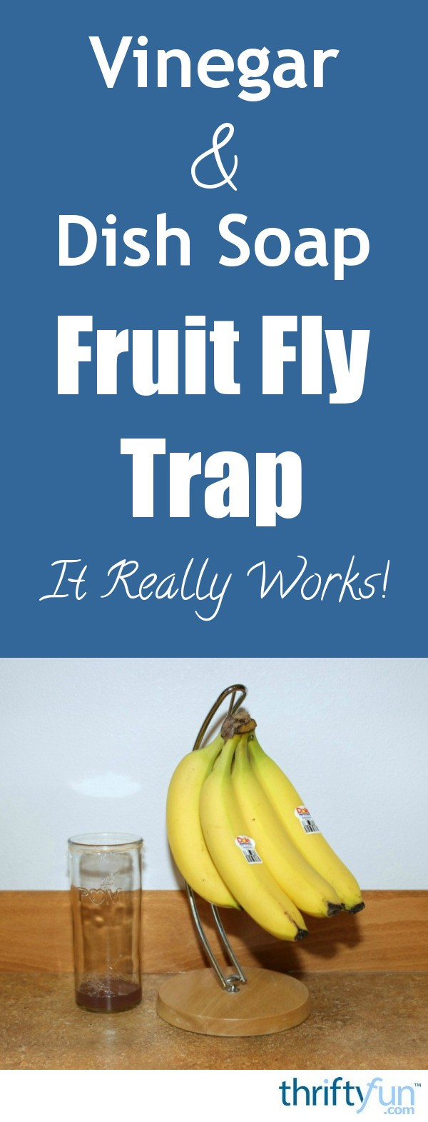 Vinegar And Dish Soap Fruit Fly Trap Thriftyfun