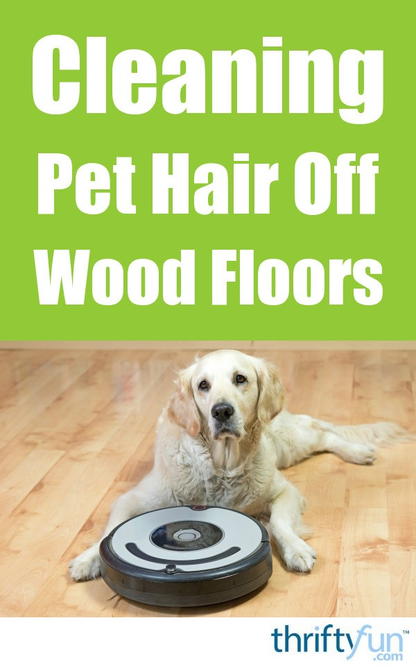 A Few People Need To Tidy Up Pet Hair From Home Then Again Who Keep Hepa Filtration As The Most Critical Factor With Family