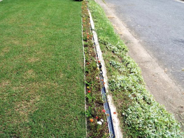 Sunken Gutters For Flower Border Containers - newly replanted