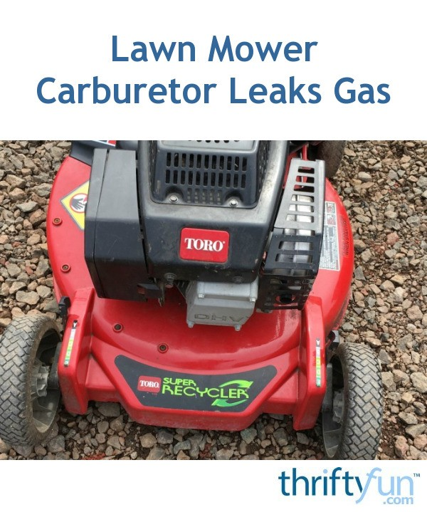 Lawn Mower Carburetor Leaks Gas ThriftyFun