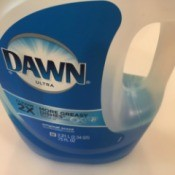 A bottle of Dawn dish soap.