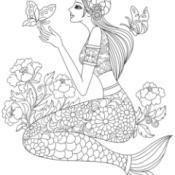 Capricorn or Sea Goat Twelve Zodiac