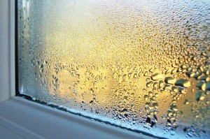 Window with condensation on the inside.
