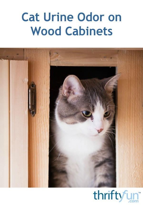Cat Urine Odor On Wood Cabinets Thriftyfun