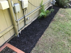 Preventing Pests Around House  Foundation - bark along the foundation