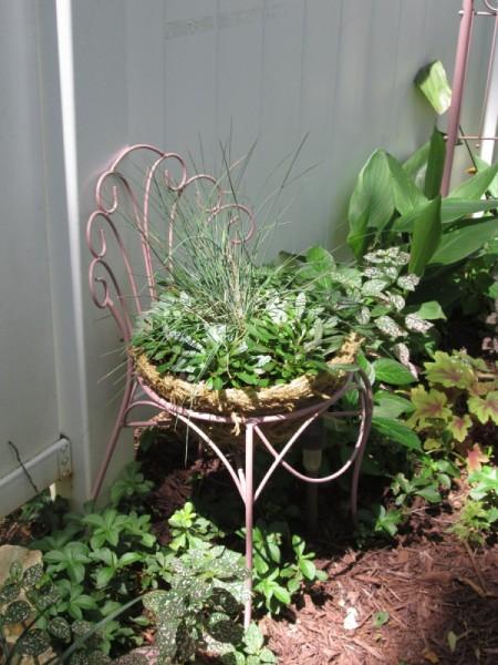 Thrift Store Garden Chair Planter - planted