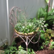 Thrift Store Garden Chair Planter - planted