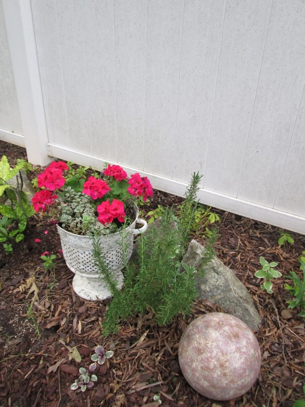 Using Old Cooking Containers As Planters - strainer painted white and planted with geraniums