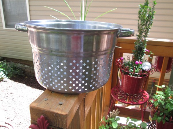 Using Old Cooking Containers As Planters