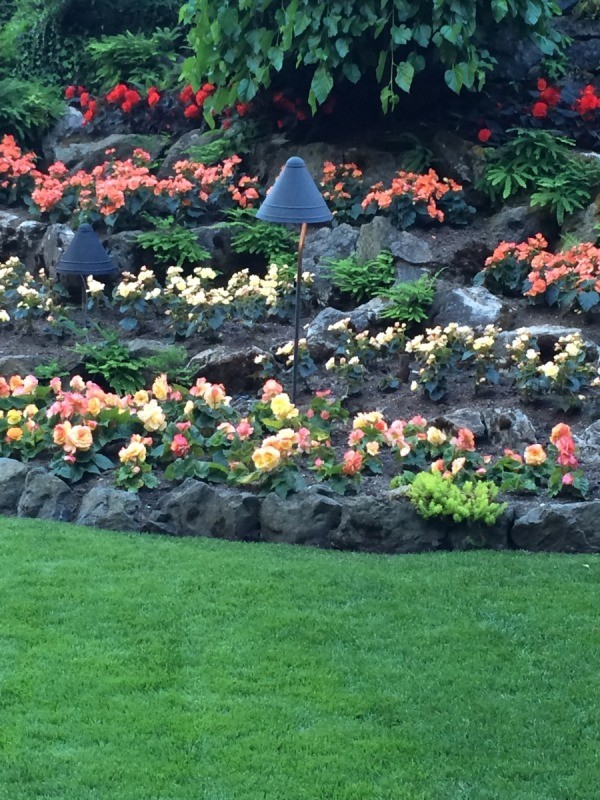 Butchart Gardens Collection