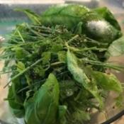herbs and seasoning in food processor