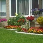 My Aunt's Garden - house foundation grden