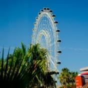 A ferris wheel at Disneyworld.
