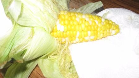 husk pulled back on corn