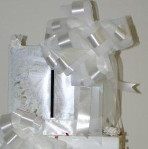 RE: Homemade Wedding Cake Topper Ideas