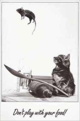 RE: Homemade Cat Treats
