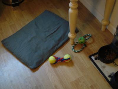 Easiest To Wash Big Dog Bed