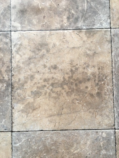 Removing Mold Stains From Linoleum Floor Thriftyfun