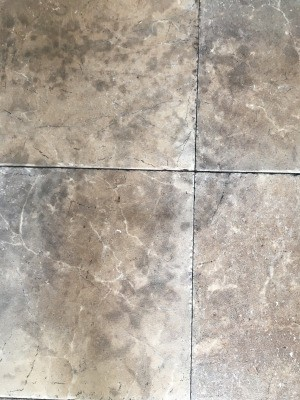 Removing Mold Stains from Linoleum Floor