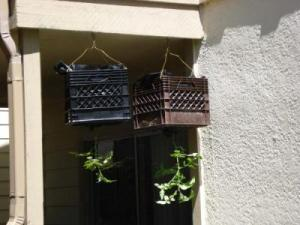 RE: Making Your Own Hanging Tomato Baskets