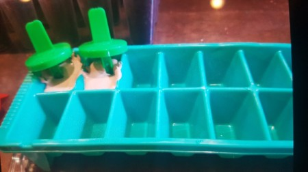 Mini Chocolate Pops in ice tray