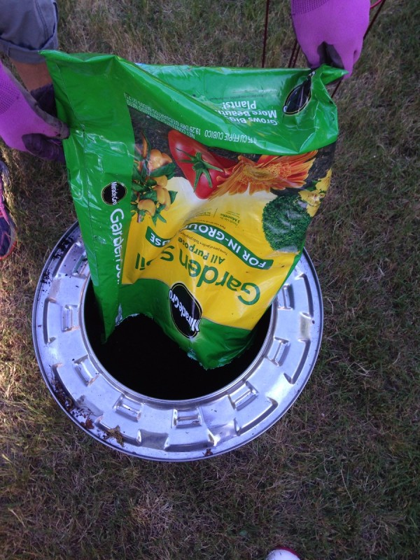Plant Your Tomato in a Recycled Washing Machine Tub - emptying veggie garden soil into the tub