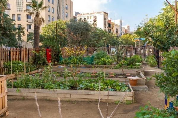 Gardening Club Ideas Ideas to revitalize a garden club thriftyfun a community garden workwithnaturefo