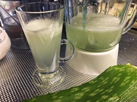 Homemade Aloe Vera Juice