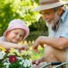 A young girl gardening with her grandpa.
